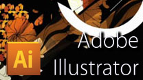 Adobe Illustrator (G401)